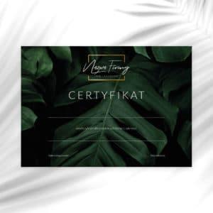 certyfikat na szkolenia z monstera i złotym logiem