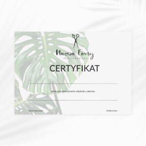 certyfikat dla stomatologa