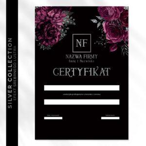 Srebrny certyfikat dla kosmeologa