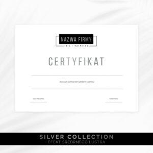 Srebrny certyfikat ukończenia szkolenia dla makijażystki