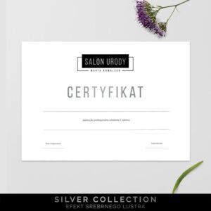 Posrebrzany certyfikat dla makijażystki